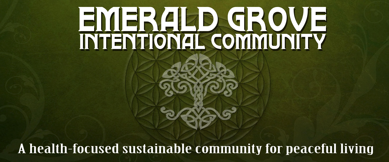 EmeraldCommunityBannerCenter (1)